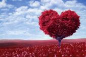 Ünlülerden Vatan Sevgisi Sözleri