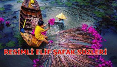 Resimli Sözler-Elif Şafak'tan