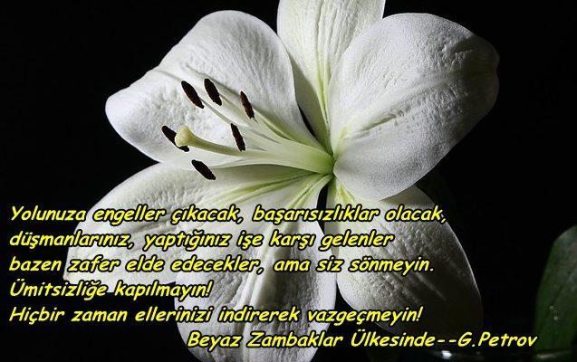 Grigory Petrov Sözleri