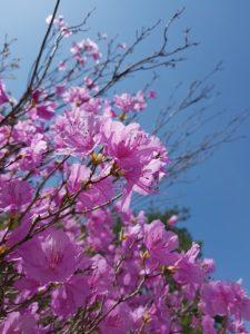 Nisan Ayı Ile Ilgili Atasözleri Muhteşem Sözler