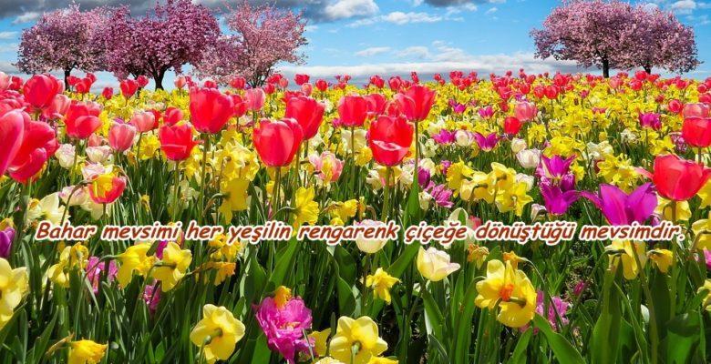 Baharla Ilgili Sözler Muhteşem Sözler