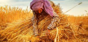 15 Ekim Dünya Kadın Çiftçiler Günü Mesajları